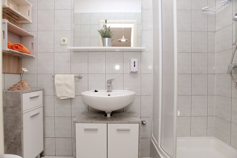 A1(2): bathroom with toilet