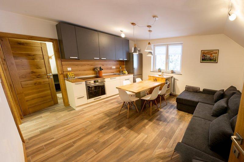 Apartment Laznica - NEW*Comfortable*Apartment under Porezen Mountain, holiday rental in Idrija