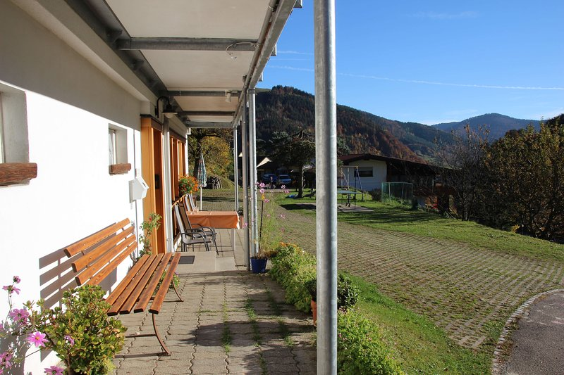 Apartment sun view - Cozy traditional black forest family apartment with, vacation rental in Todtnau