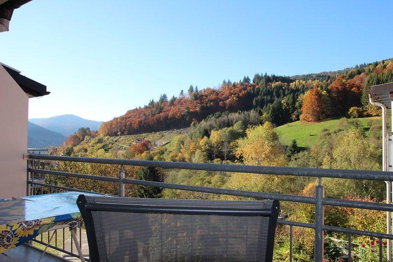 Apartment Bergfreude Todtnau - Gemütliche Ferienwohnung im Schwarzwaldstil mit, Ferienwohnung in Bürchau