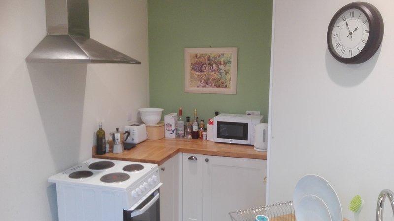 La cocina es nueva: lavabo, cocina, horno, frigorífico, microondas, lavadora-secadora, un montón de espacio de almacenamiento