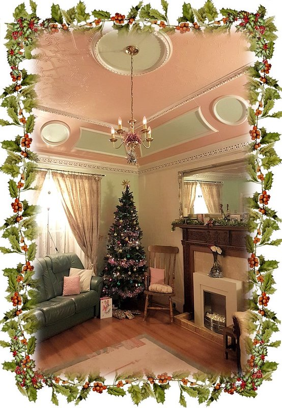 All ready and dressed for our Festive Guests. We can do other celebrations too.