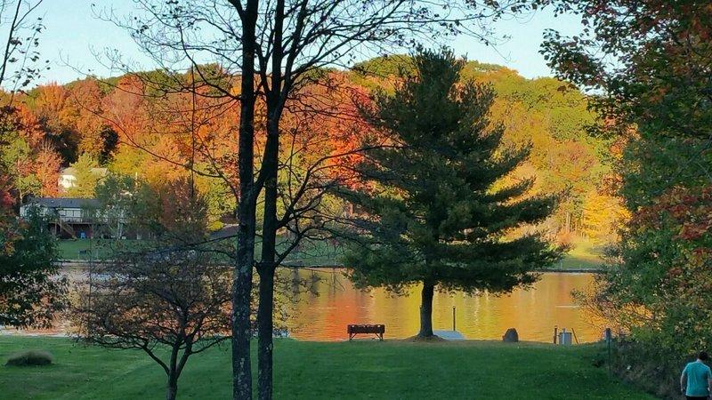 borda da água no outono, grande quintal plana
