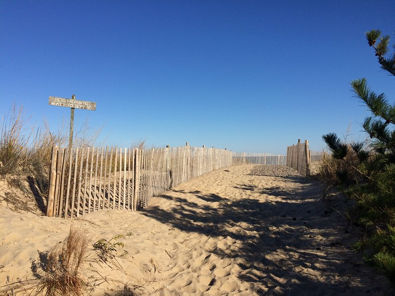 Sunny, Bright and Clean Home Steps from the Beach--, vacation rental in Fenwick Island