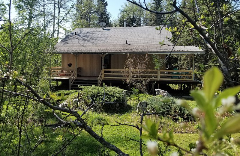 Country Cabin in the Woods, vakantiewoning in Clearwater County