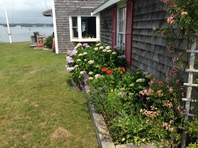 Waterview of side yard. Perennial and annual plants.