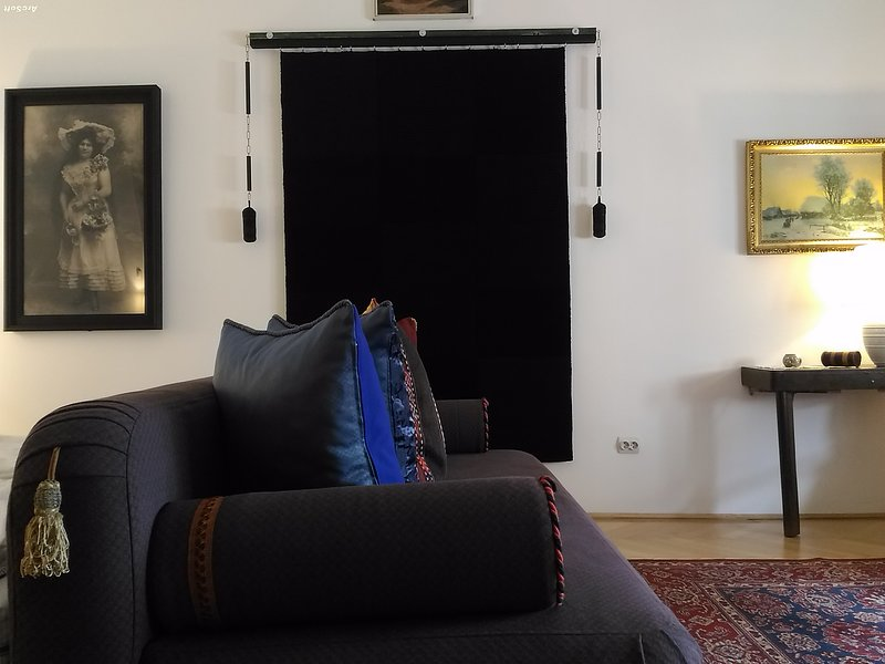 2 separate bedrooms+ AC, Danube view, central heating, historical, speed wifi, holiday rental in Domos