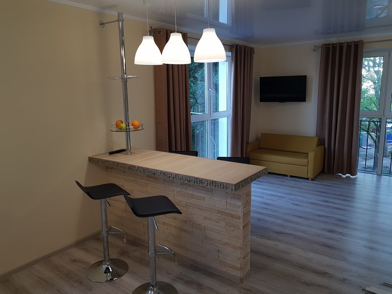 deluxe apartment, alquiler de vacaciones en Svetlogorsky District