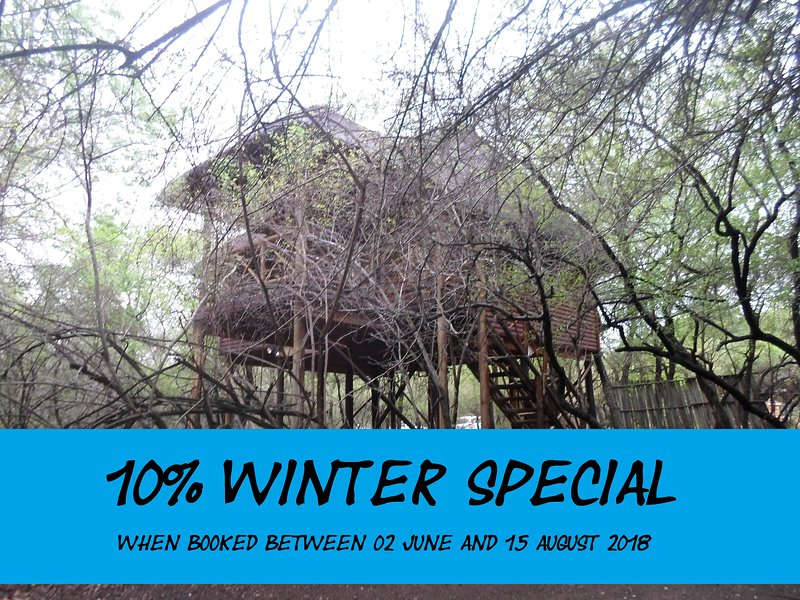 Great Winter Special 2018