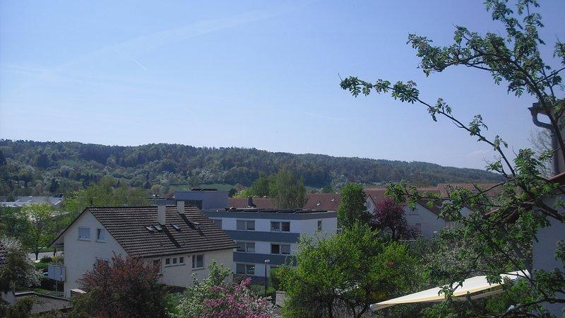 Looking towards Ammertal and Schwärzloch
