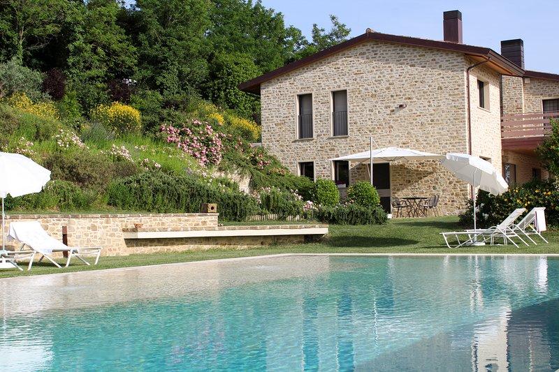 Amazing Assisi