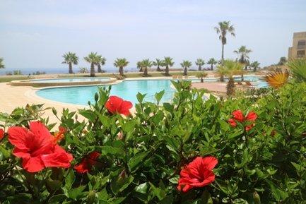 Vista a la piscina desde la terraza privada