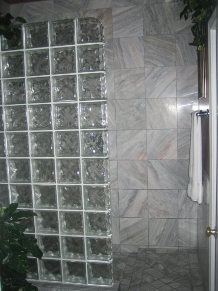 Glass Brick Walk in Shower in Master Bath.