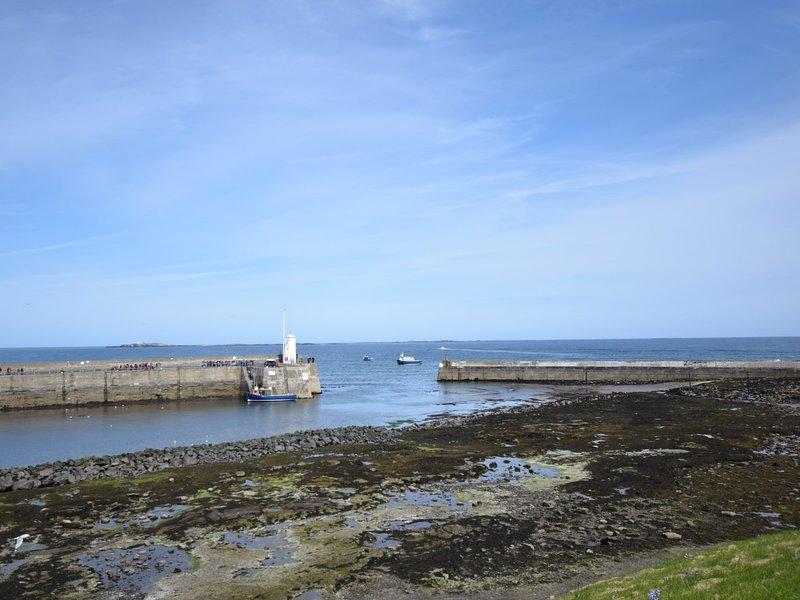 Tome un paseo en barco, a un corto paseo por el puerto