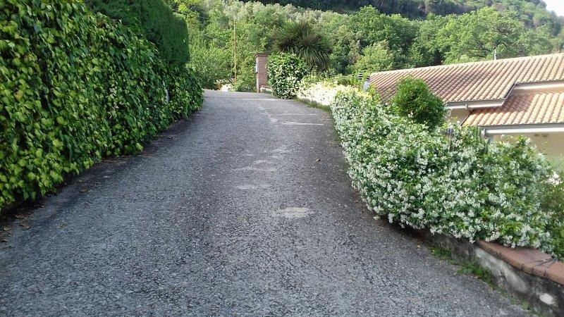 Villa San Lorenzo, holiday rental in Castelnuovo del Garda