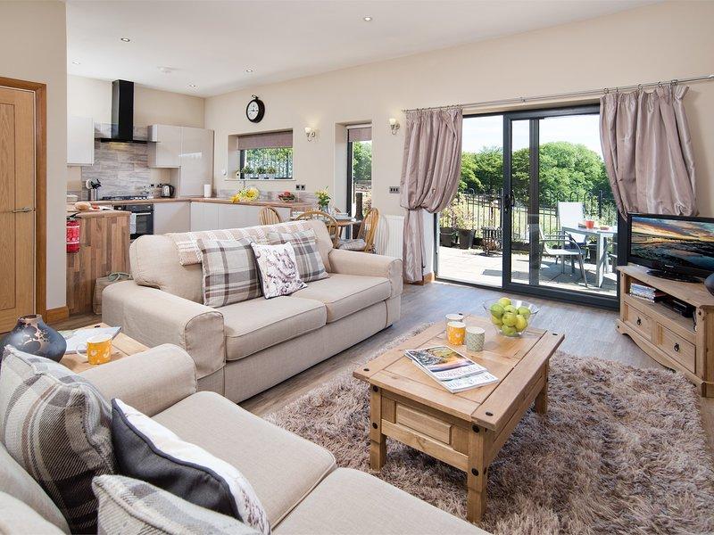 Stylish contemporary  open plan living