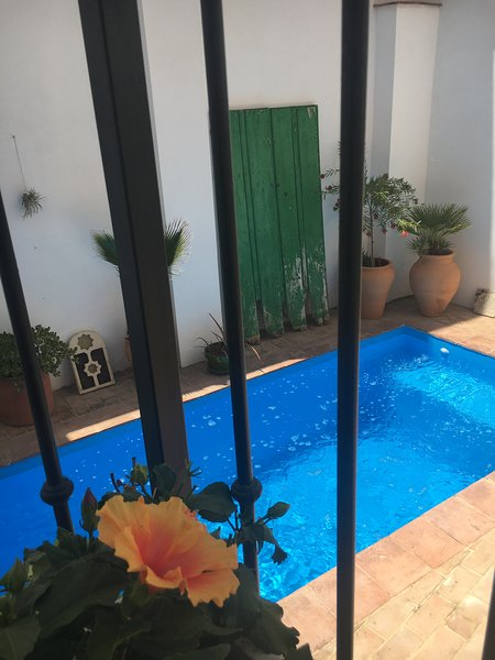 Award winning Moorish House with Pool – semesterbostad i Pinos del Valle