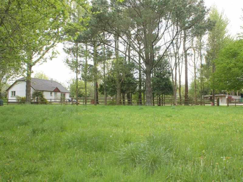 Pine Croft and neighbouring field