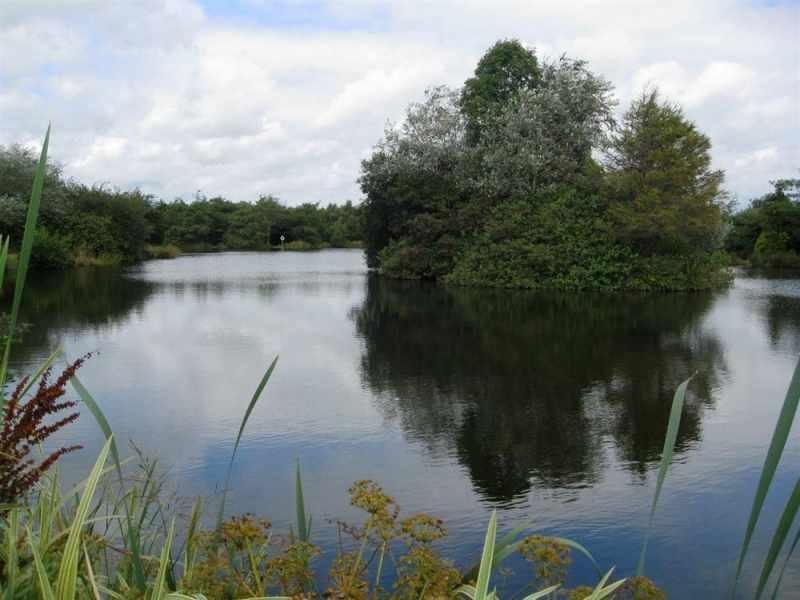 lago de pesca