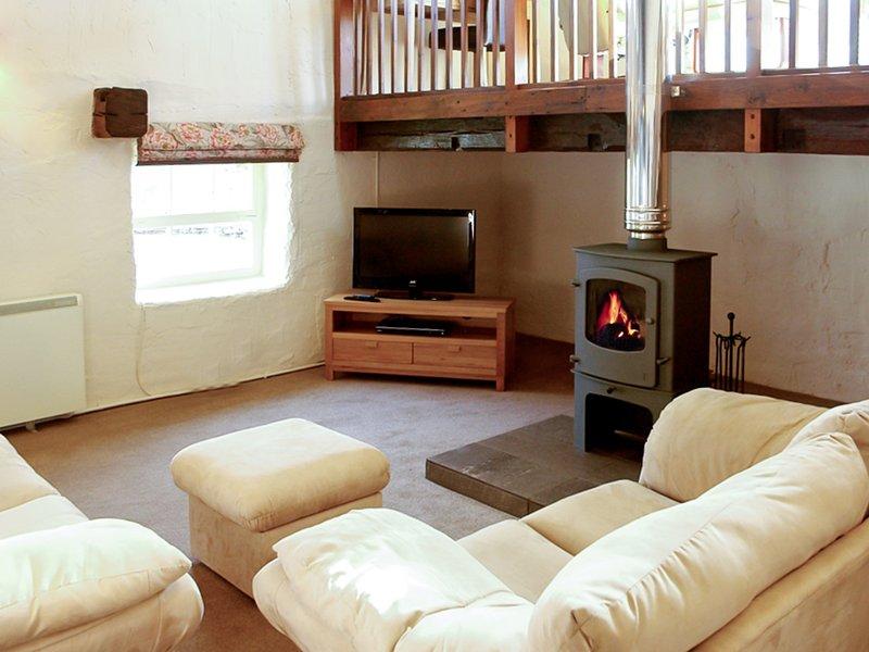 Lounge med contemporay braskamin