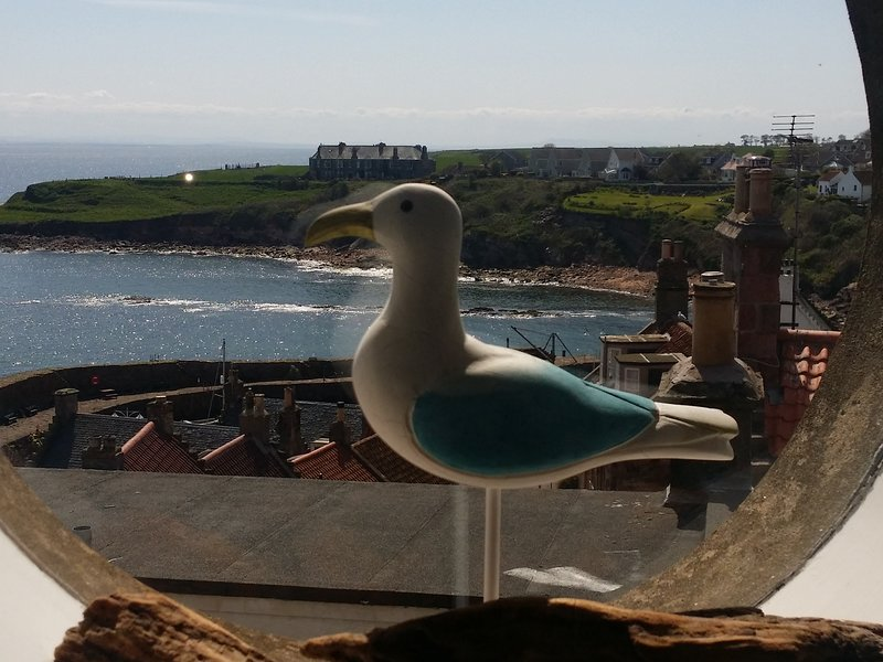 Harbour View Apartment, holiday rental in Crail