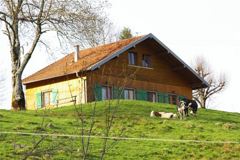 Chalet montagne. Vue panoramique.Randonnée Vosges du Sud. Proche lac GERARDMER, vacation rental in Saulxures-sur-Moselotte