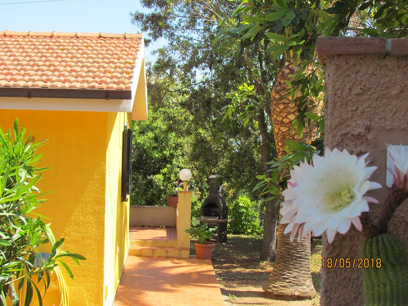 appartamentiitigli 1, vacation rental in Capoliveri