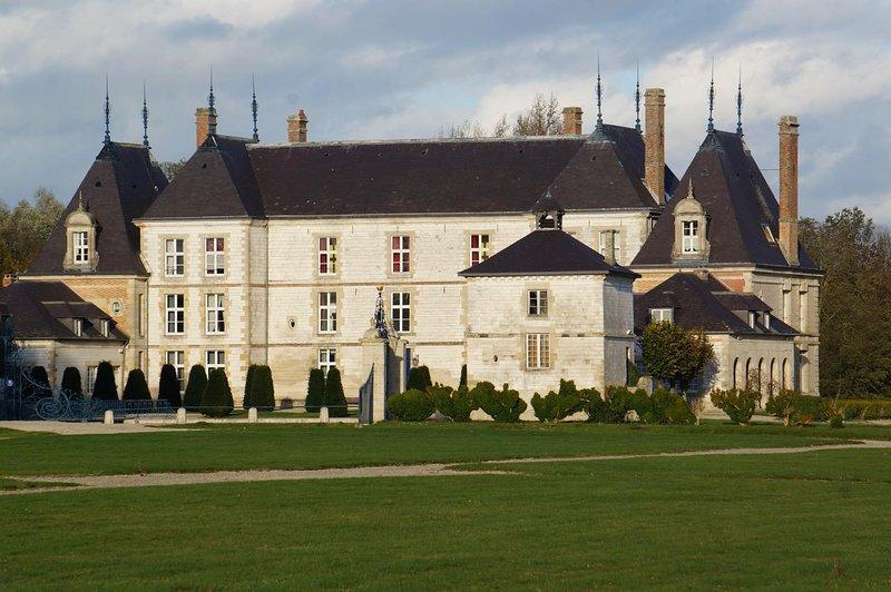 Château de Vitry-la ville, vacation rental in Marne