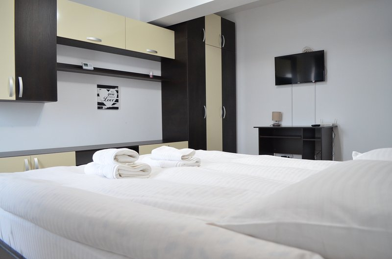Alexys Residence 11, vacation rental in Iasi