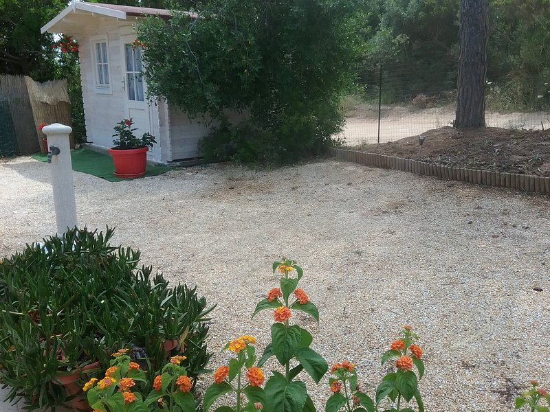 Garden, outhouse