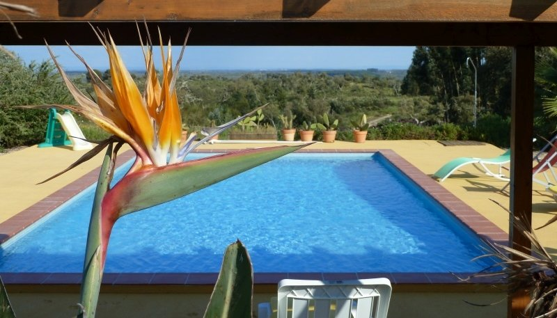 Casa Sobreiro, all about nature, silence, tranquility and privacy.