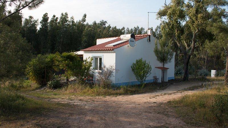 Casa Oliveira, todo sobre la naturaleza, el silencio, la tranquilidad y la privacidad.