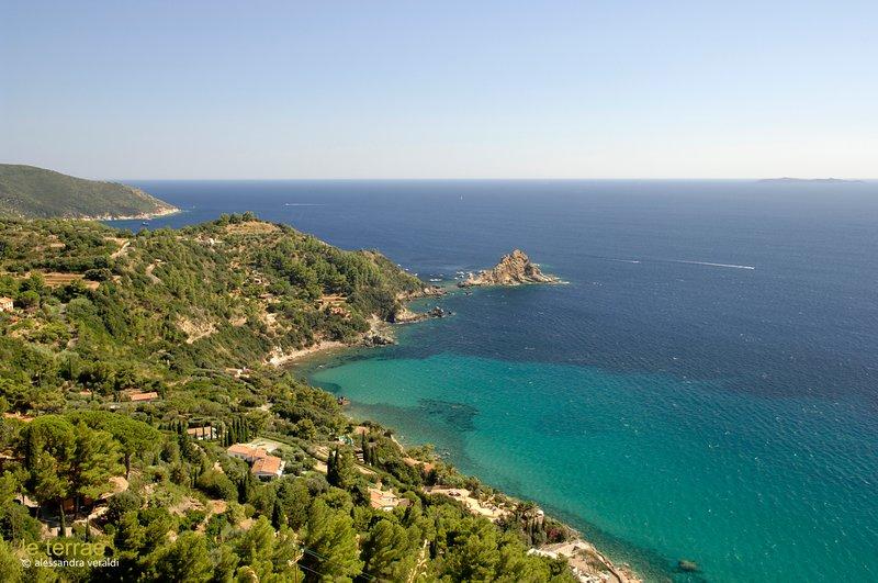 Environnement - Méditerranée, rivage 15 min 1 h
