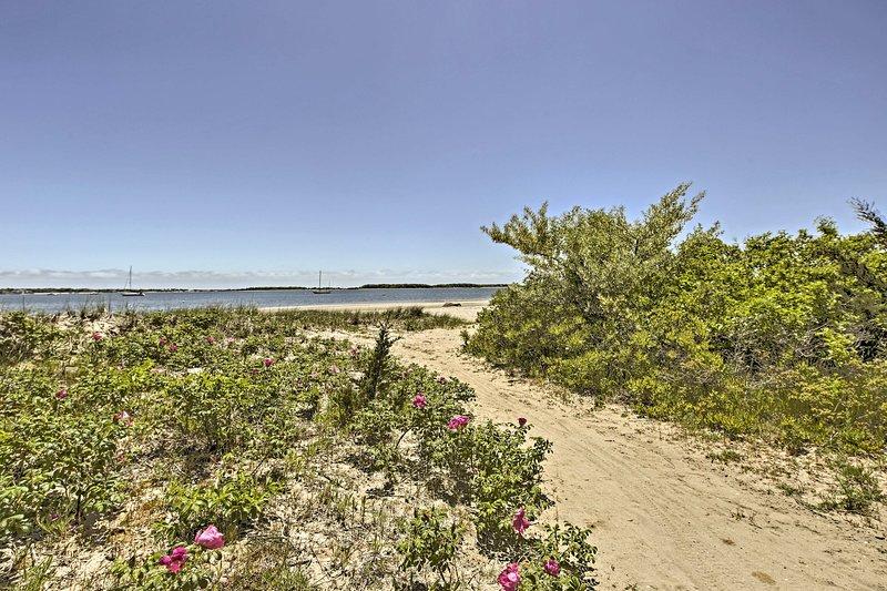 U hoeft niet ver te reizen om de zanderige oevers van Lewis Bay te bereiken.