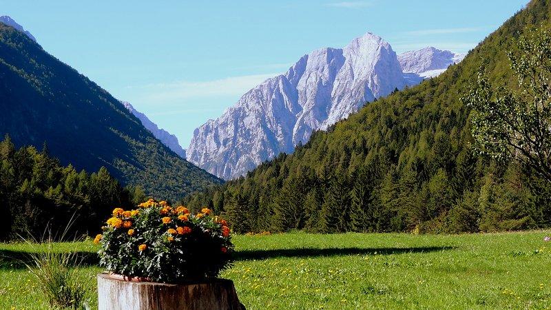 Aproveite a sua estadia no local mais bonito em Mojstrana. 20 minutos de distância de Bled.