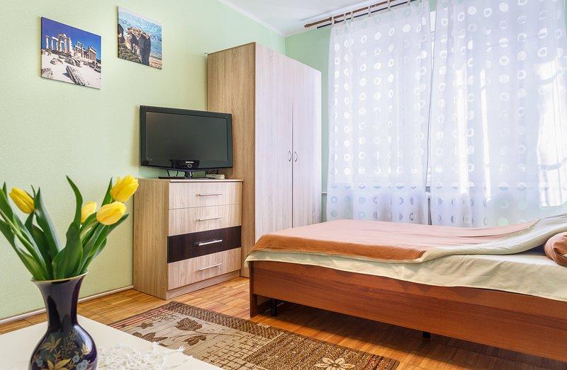 Sunny apartmet Kolomenskaya (1-4 guests), holiday rental in Zhukovsky