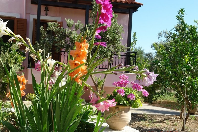 Enjoy the Cretan nature at Villa Athina!, holiday rental in Sfakaki