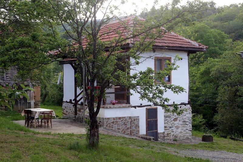 Zatizov home- Radlovtsi in Kyustendil region, vacation rental in Kyustendil Province