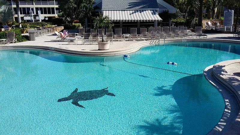 Refreshing pool with Tortuga logo.