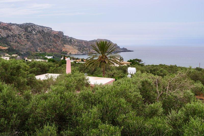 Palm Beach House – semesterbostad i Amigdhalokefali