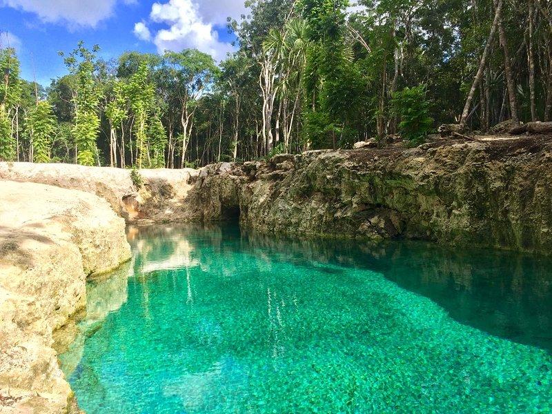 Cenote privada (piscina natural)