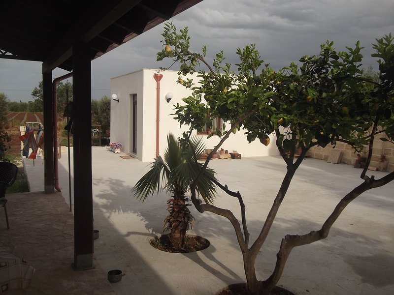 Beautiful studio with garden & Wifi, holiday rental in Collemeto