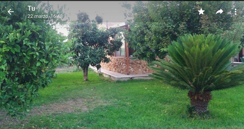 Casa vacanze Felicia, holiday rental in Fanusa