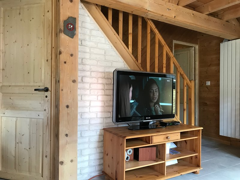 TV pela internet