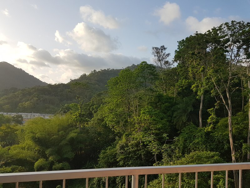 Greene Kairi (Arima) near Asa Wright Nature Centre, holiday rental in Grande Riviere