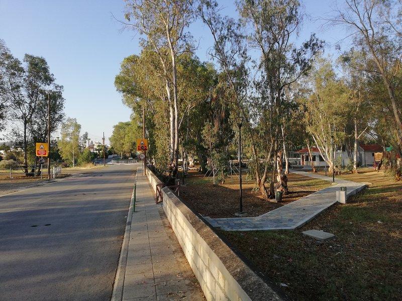 Nearby park area