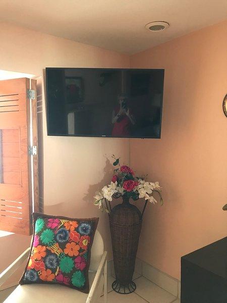 New Smart TV in bedroom