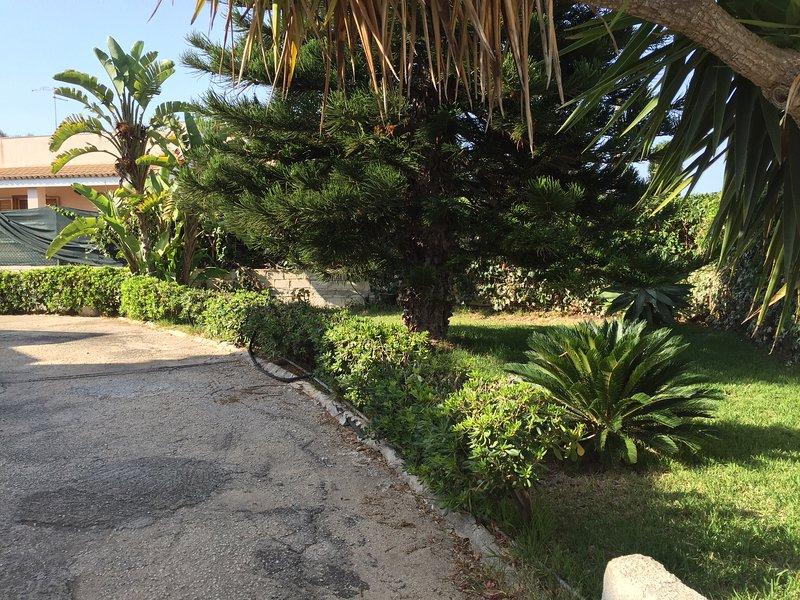 Villa Lara ...a pochi passi dal mare, holiday rental in Arenella