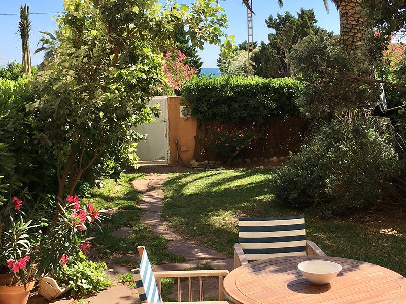 Terraza y jardin