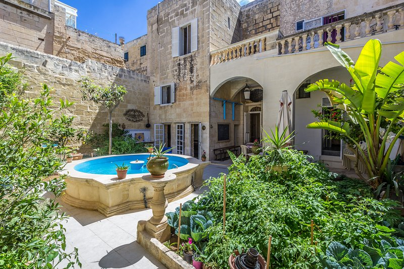 The internal courtyard of the Palazzo, with our hybrid cold-water pond/pool and garden.
